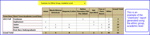 Results by Ethnic Group, Academic Level
