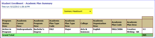 Summary Headcount view screen shot