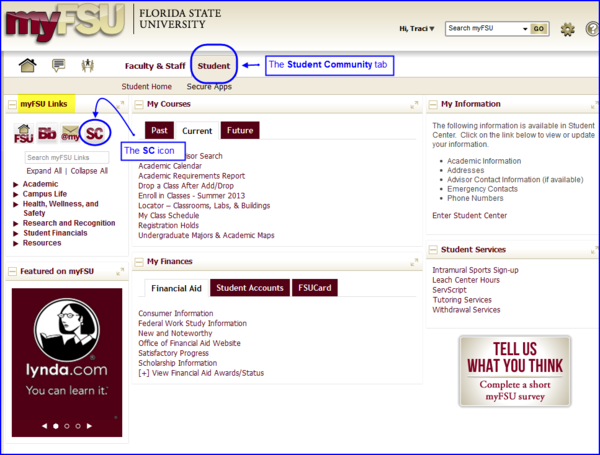 Assign Delegated Access to a Third Party   myFSU Student Central