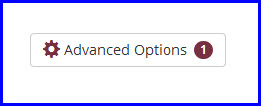 Advanced Options tally.jpg